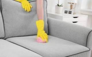 Кот пометил диван как избавиться от запаха
