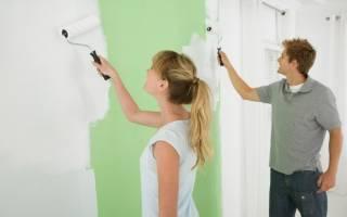 Какой краской покрасить стены в квартире