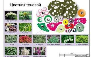 Как сделать цветник своими руками пошаговая инструкция