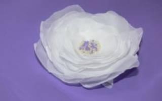 Цветы из вуали и органзы своими руками