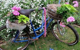 Как благоустроить двор частного дома своими руками