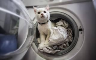 Как расположить стиральную машину в маленькой ванной