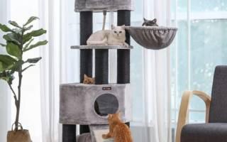 Как сделать домик для котика своими руками