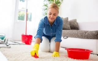 Как почистить длинноворсовый ковер в домашних условиях