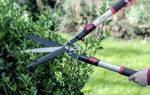 Как называются садовые ножницы