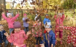 Как правильно оформить гербарий в школу