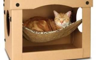 Как сделать кошачий домик из коробки